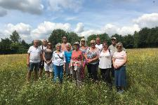 Thaxted health walk
